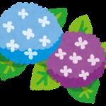 藤森神社 「紫陽花まつり」